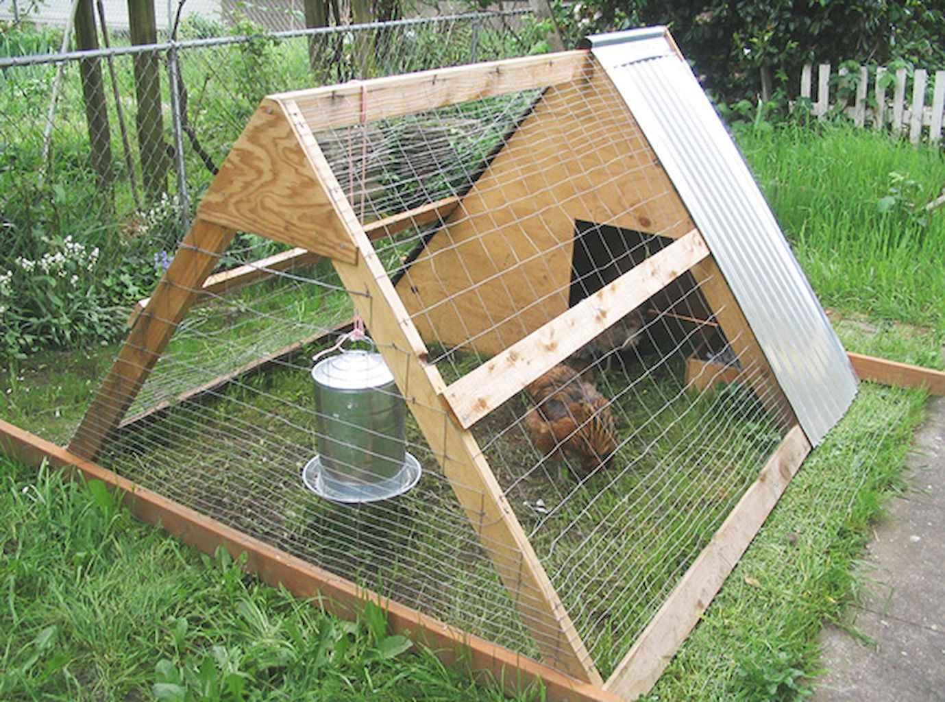 Клетки для цыплят своими руками: размеры, чертежи 39